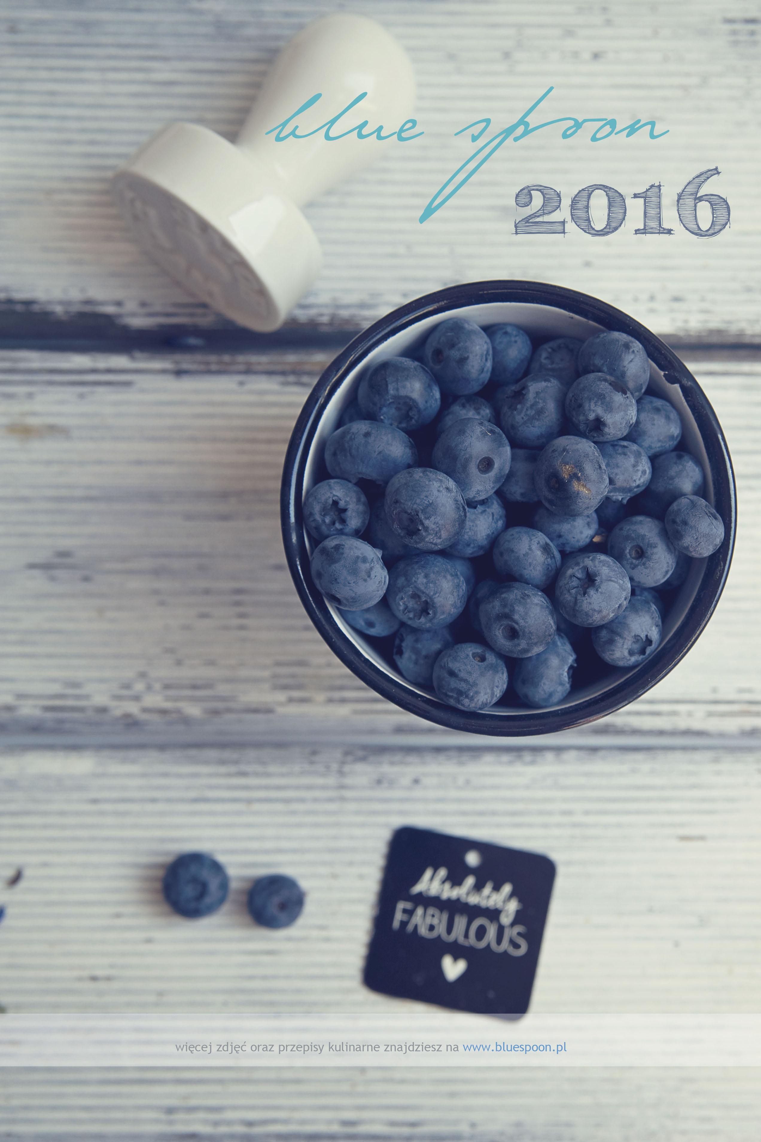 kalendarz bluespoon 2016