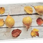 Listopadowa tapeta i kalendarz na 2013 rok
